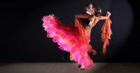 Waltz Dance Styles couple